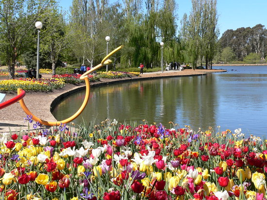 ‪‪Canberra‬, أستراليا: Floriade sculpture‬