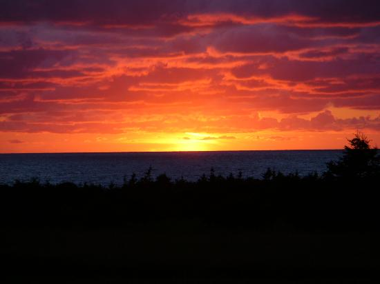Ocean Haven Bed & Breakfast : the usual sunset!