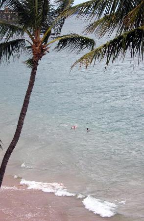Kamaole Nalu Resort: You can watch your swimmers