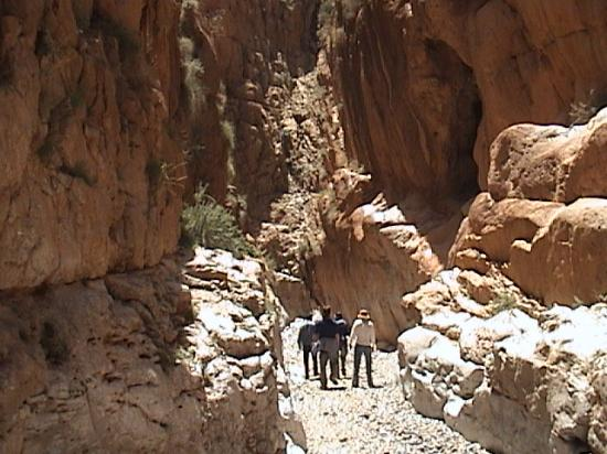 Chez Pierre: In The Dades gorge w/ Mohommed our guide