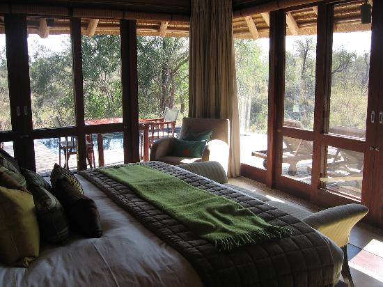 Dulini Leadwood Lodge: Safari - view from bedroom