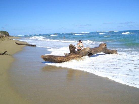 Sosua, Dominikanska Republiken: Strandspaziergang