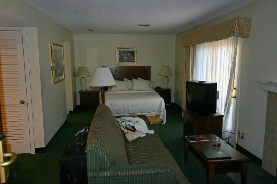 Residence Inn Buffalo Amherst: Room1