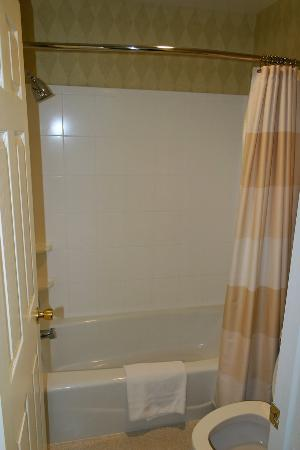 Residence Inn Buffalo Amherst: Bathroom2