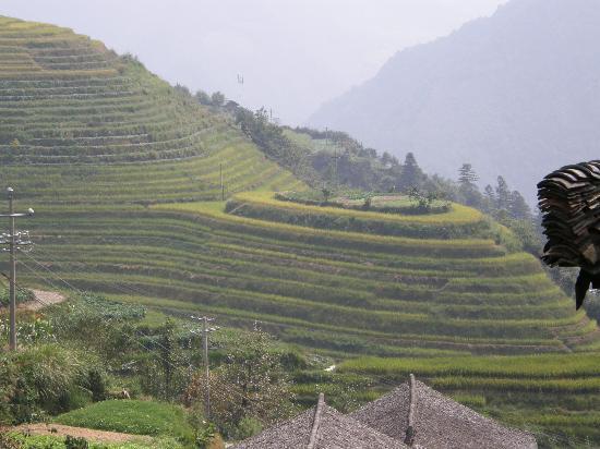 جويلينج ليانج ووتر فول هوتل: Longsheng rice terraces