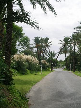 One Resort Monastir: entrée hotel