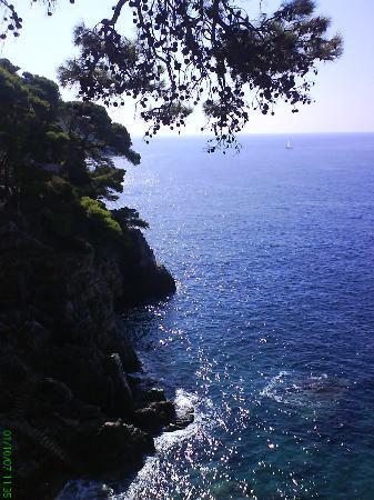 TUI SENSIMAR Kalamota Island Resort: Vista del mar desde uno de los caminos que tiene la isla