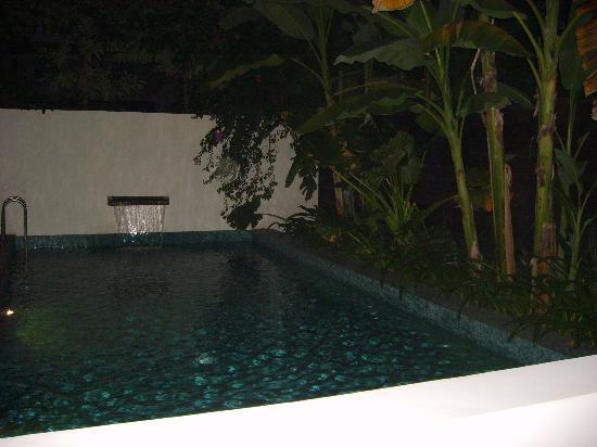 Viroth's Villa : piscine