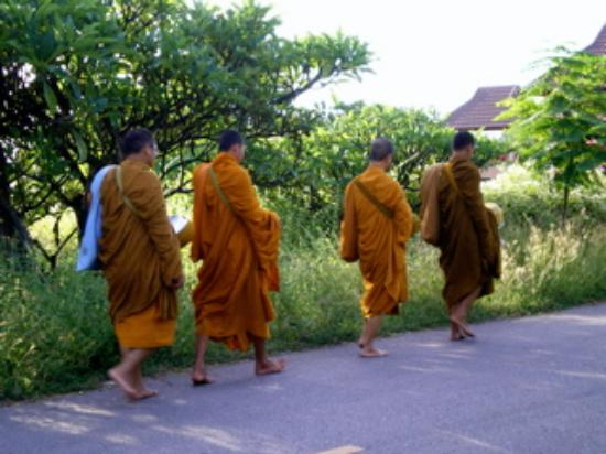 Dusita Resort Pranburi : monk in the morning