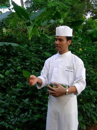 The Singapore Culinary Academy & Spice Garden: Spice Garden tour