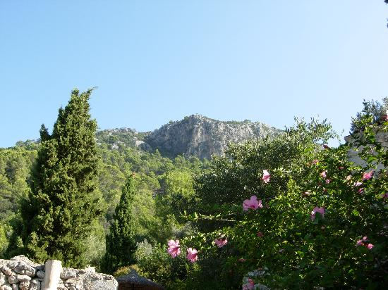Finca Es Castell: View of the surroundings
