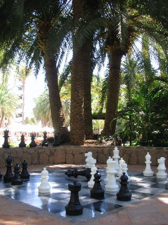 Seaside Palm Beach: Chess board in the grounds