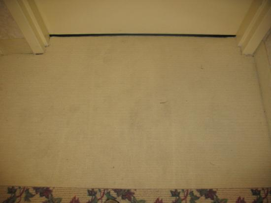 Americas Best Value Inn: Carpet in front of our room door.