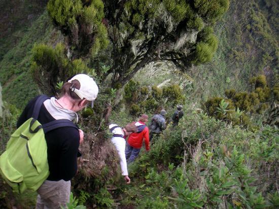 Mount Sabinyo: And climbing back down