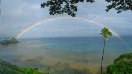 Nakia Resort & Dive: One of the many stunning rainbows