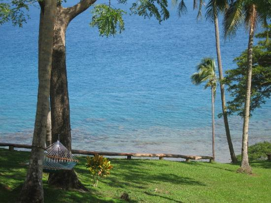 Nakia Resort & Dive: My favorite place to read