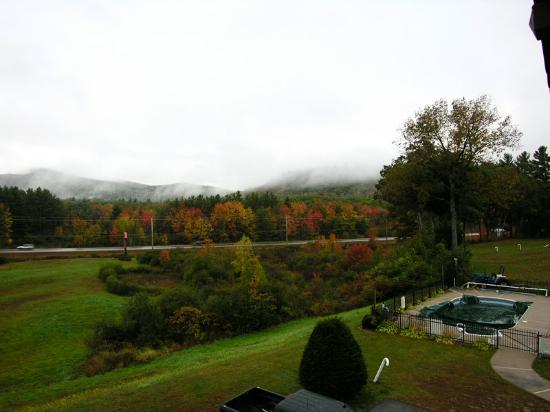 Swiss Chalets Village Inn: View of the pretty fall foliage from out balcony window on a beautiful foggy morning