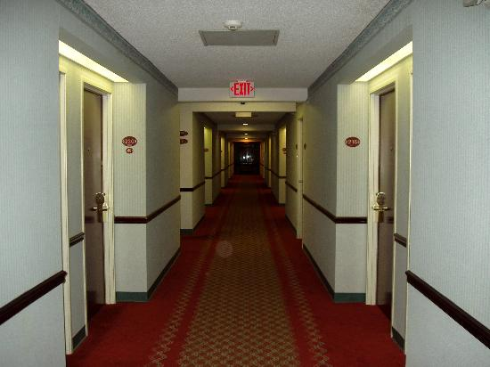 Ramada Limited Columbia: Second floor hallway leading to our room