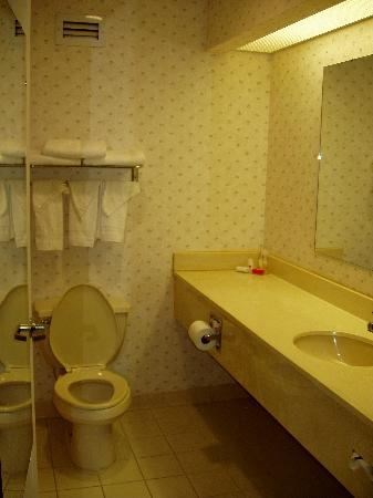 Ramada Limited Columbia: Spacious well-stocked bathroom