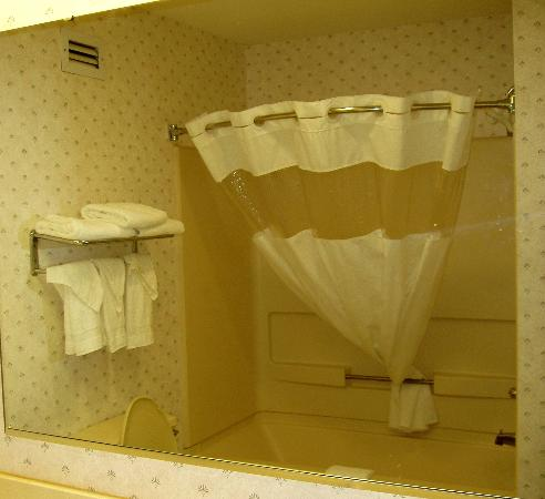 Ramada Limited Columbia: Shower area, as seen in mirror