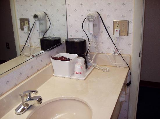 Ramada Limited Columbia: Bathroom Sink w/ coffeemaker & hair dryer
