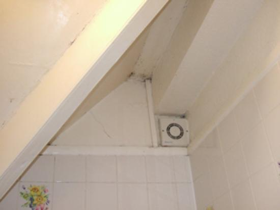 Avon Guest House: The mouldy ceiling