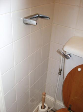 Avon Guest House: The toilet roll holder that does not work