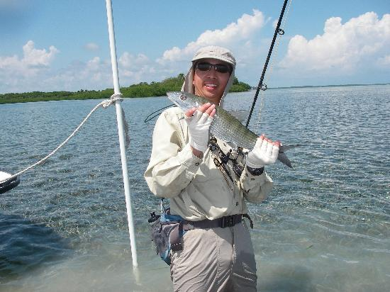 Turneffe Flats: Bonefish on the flats