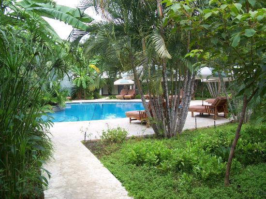 Harmony Hotel Nosara: Harmony pool area - right near the restaurant/bar