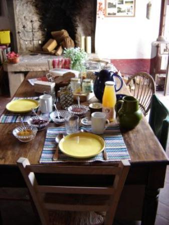 Il Giardino Segreto: breakfast. all homemade, organic, grown locally