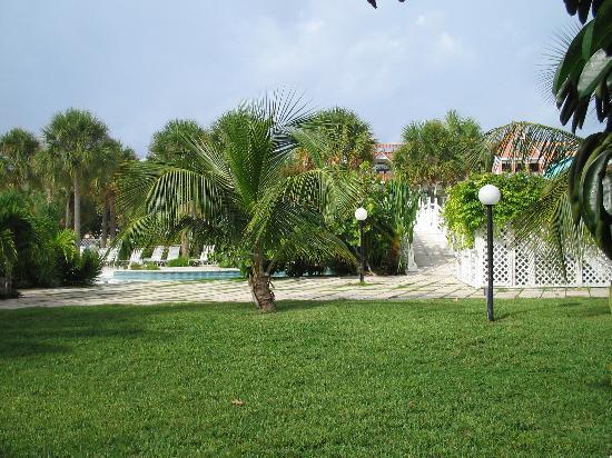 Taino Beach Resort & Clubs: landscaping