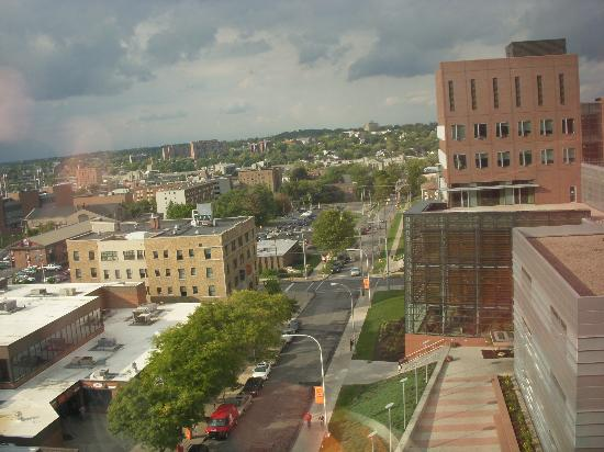Sheraton Syracuse University Hotel & Conference Center: View from Syracuse Sheraton room
