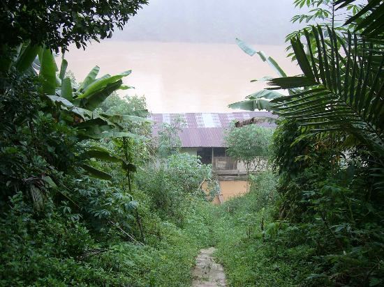 Gunung Stong: view of the river near Dabong mosque