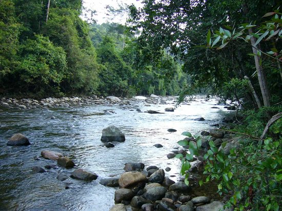 Gunung Stong: where I took my last refreshing dip