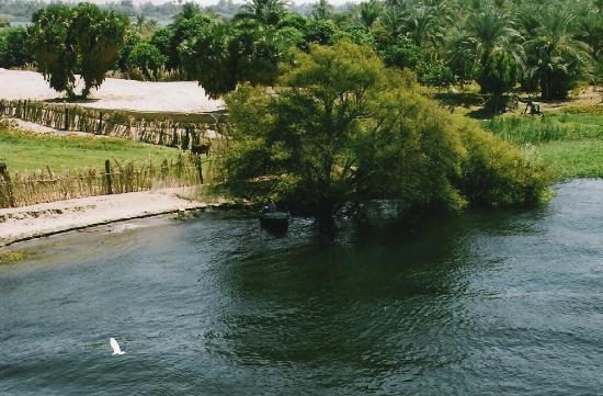Lembah Sungai Nil, Mesir: Banks of the Nile