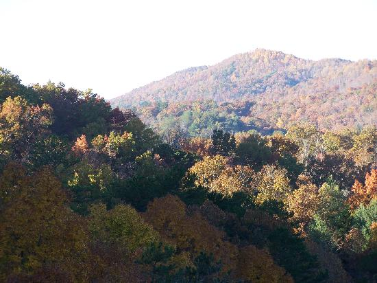 Fall in the Tarheel community of Murphy,NC