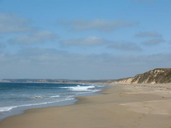 Ten Inverness Way: View of Beach Point Reyes Ntl SeaShore