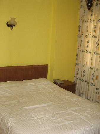 Gul Sultan Hotel: Habitación