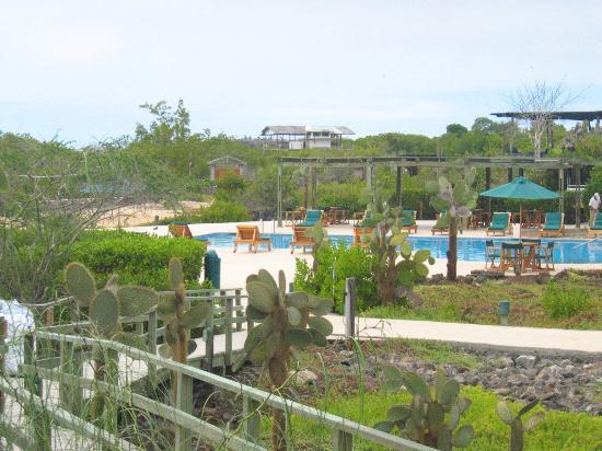 Finch Bay Galapagos Hotel: piscine de l'hôtel