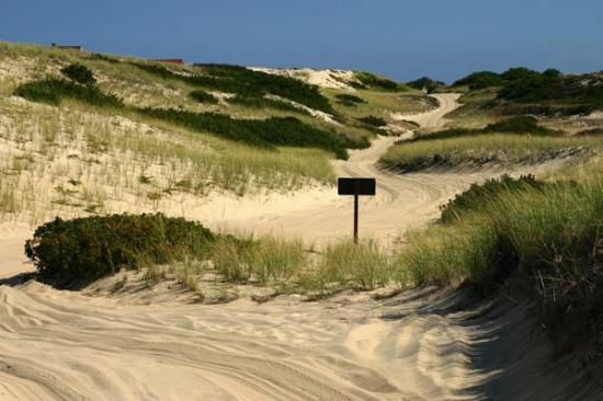 Cape Cod, MA: Race Point ORV Road
