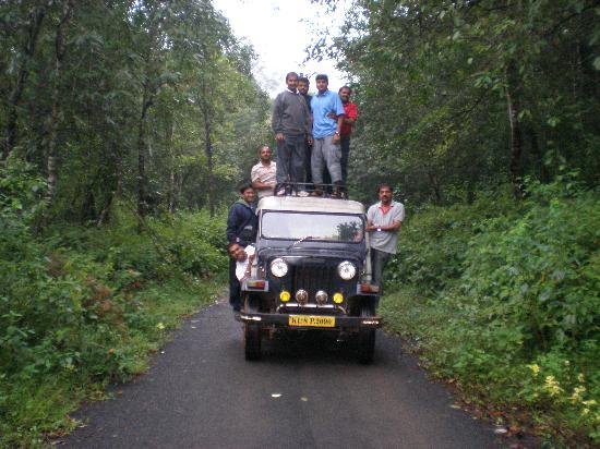 Θέκαντι, Ινδία: Ghat Road, Pachakanam, Thekkady