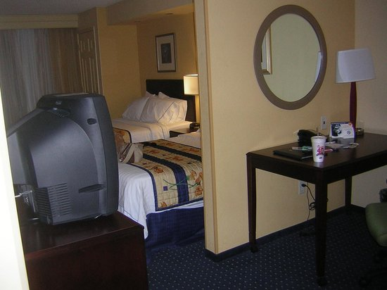 SpringHill Suites St. Petersburg Clearwater: view as you walk in