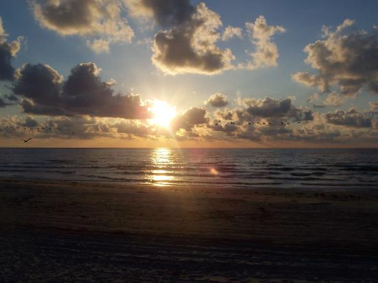 Hawthorn Suites by Wyndham Corpus Christi Padre IS : Morning Sunrise at the Beach