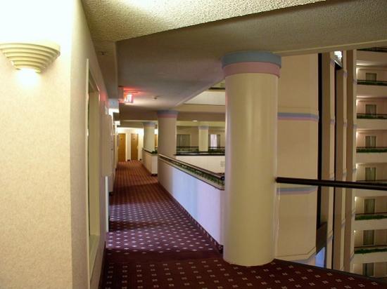 DoubleTree Suites by Hilton Hotel Salt Lake City: 6th Floor, View Left