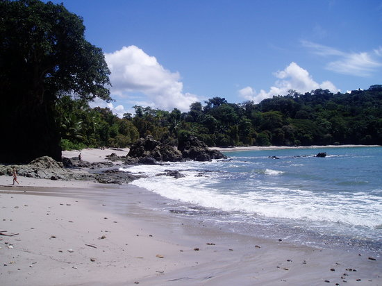 Sí Como No Resort & Wildlife Refuge: the beach in Manual Antonio