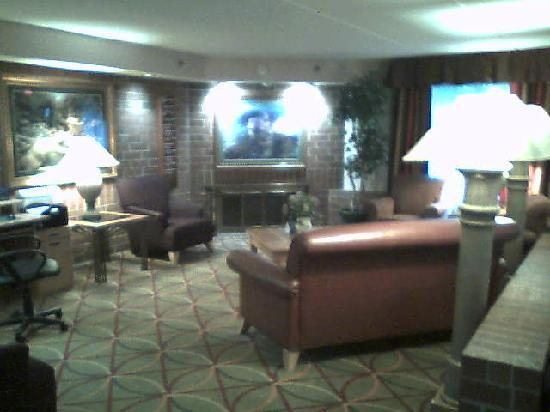 AmericInn Hotel & Suites Bloomington West : Lobby sitting area with fireplace