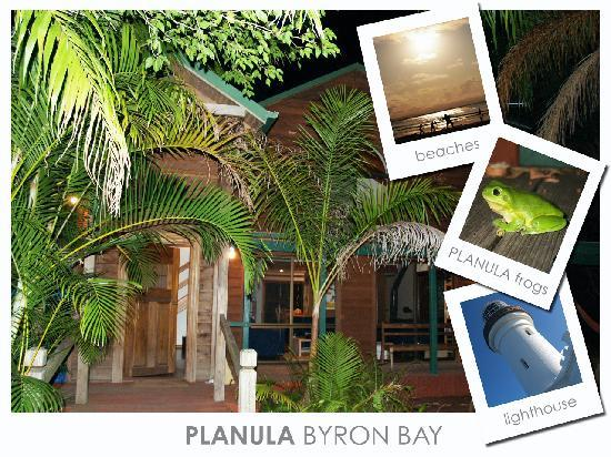 Planula B&B Retreat: Planula post card 2007