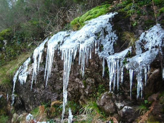 Montalegre, Portugal : Ice on the way to Geres
