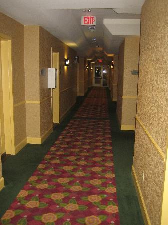 بست ويسترن سيدار إن آند سويتس: Hallway