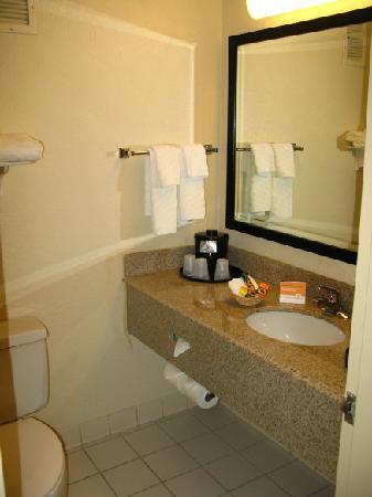 La Quinta Inn & Suites Armonk Westchester Cnty Apt: Bathroom